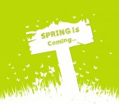 Spring is coming concept with sign post — Vector de stock