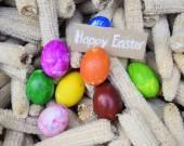 Easter Egg on  corn background — Stock Photo