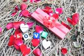Heart and rose petals on grass — Stock Photo