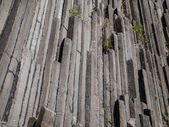 Basalt organ pipes - detail — ストック写真