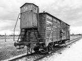 Transport wagon in concentration camp — Photo