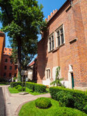 University garden in Krakow — Stock Photo