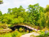 Garden bridge — Stock Photo