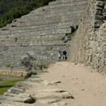 Unusual view of Machu Picchu terraces — Stock Photo #55995611
