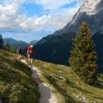 Men trekking in the Alps — Stock Photo #71779887
