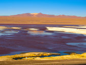 Laguna Colorada in Cordillera de Lipez — Stock Photo