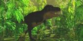 Tyrannosaurus Jungle — Stock Photo