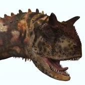 Carnotaurus Head — Stock Photo