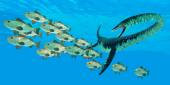 Elasmosaurus hunts a school of Bocaccio fis — Stock Photo