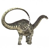 Apatosaurus, auch genannt Brontosaurus, — Stockfoto