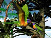 Rainbow Lorikeet Parrots — Stock Photo