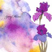 Vector watercolor background with irises — Stock Vector