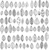 Set of decorative abstract leaves — Stock Vector