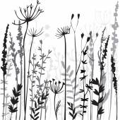 Silhouettes of flowers and grass — Stock Vector