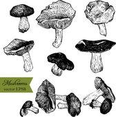 Verzameling van lineaire tekening paddestoelen — Stockvector