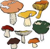 Zestaw liniowej rysunek grzybów — Wektor stockowy