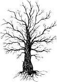 Vector ink drawing tree — Stock Vector