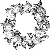 Ink drawing apple wreath — Stock Vector