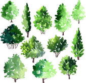 Set of different deciduous trees — Stockvector