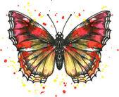 Vector butterfly in watercolor — Stock Vector