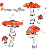 Set of watercolor drawing poisonous mushrooms — Stock Vector