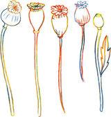 Line drawing poppy stalks — Stock Vector