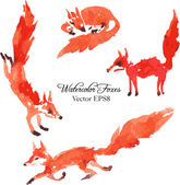 Set of watercolor foxes — Stock Vector