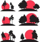 Set of landscapes with trees and risisng sun — Vetor de Stock