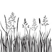 Grass silhouettes — Stock Vector