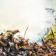 Burning autumn leaves in the garden — Stock Photo #56755053