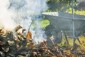 Burning autumn leaves in the sunny garden — Stock Photo