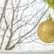 Branch with Christmas ball on a winter background — Stock Photo #58983807