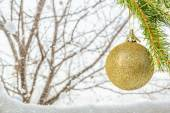Branch with Christmas ball on a winter background — Stock Photo