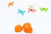 Oranges and butterflies-decorations on the snow — Stock Photo