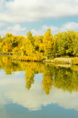 River and forest in sunny autumn day — Stock Photo