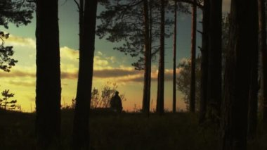 Man Walking in Forest at Sunset Time — ストックビデオ