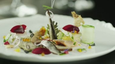 Chef serving Delicious Smoked Fish Selection in Luxury Restaurant. — Stock Video