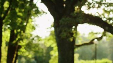 Girl Preparing to Run, Putting Headphones. Jib Shot. — Stock Video