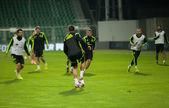 ZILINA, SLOVAKIA  - OCTOBER 8, 2014: Spain national team players — Stockfoto