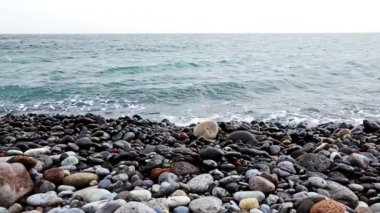 Stones with waves on beach of shore or coast of ocean or sea — Stock Video