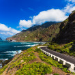 Asphalt road near coast of Atlantic ocean — Stock Photo #73937373
