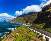 Asphalt road near coast of Atlantic ocean — Foto de Stock