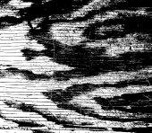 Texture de fond bois — Vecteur