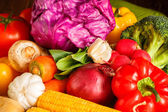 Group of vegetables closeup view — Stock Photo
