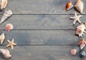 Summer background with sea shells. — Stock Photo
