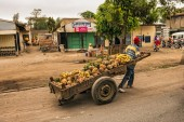 African man pulling a cart full of fruit — 图库照片