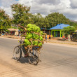 African man traveling on a bike with a bunch of bananas — Stock Photo #64312577