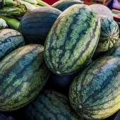 Watermelons at Farmers' Market — Stock Photo