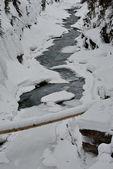 雪に覆われた川 — ストック写真
