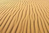 Desert Sand texture — Stock Photo